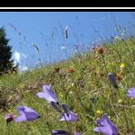 Val Lumnezia - Lugnez - Tal des Lichts - Fotokurs
