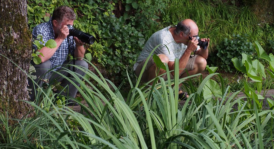 Fotokurs-im-botanischen-Garten