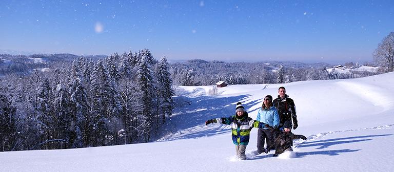 Fotoworkshop--Landschaftsfotografie-Stimmungsbilder-Sonne-und-Schnee-im-Zuercheroberland
