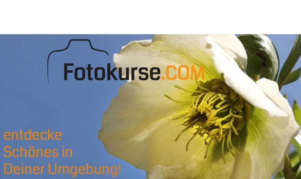 Fruehling: Zeit fuer Fotokurse - entdecke Schönes