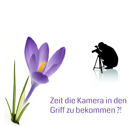 Titelbild-Krokus-Fotokurse-2018-03