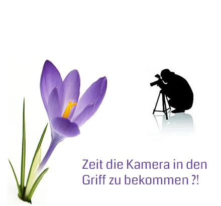 Frühling: es ist Zeit die Kamera in den Griff zu kriegen - Krokus