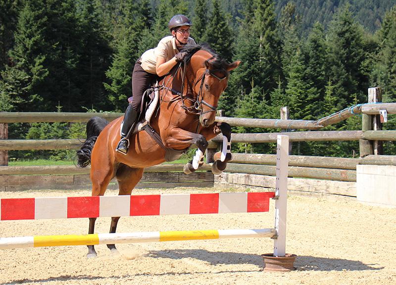 Pferde-Springreiten-speed-und-sport-fotokurs