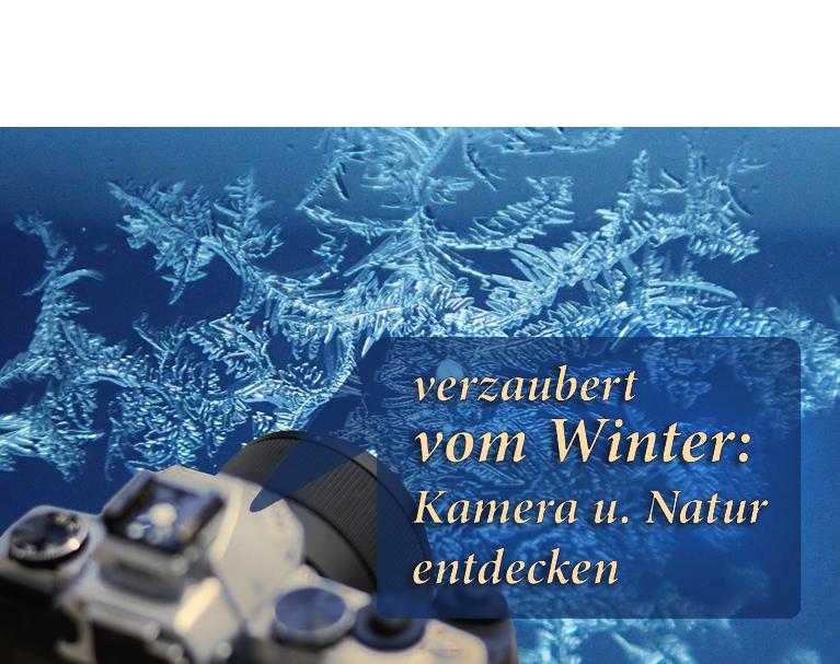 Winter-Eiskristalle-im-Fotokurs-entdecken