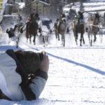 white-turf-traben-actionfotografie-fotokurs-DK.Widler