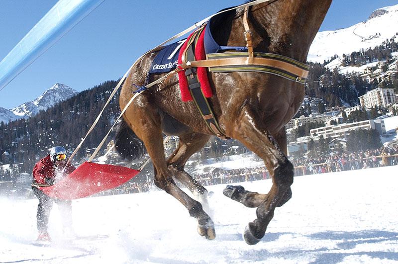 whiteturf-skioering-speed-foto-DK.Widler